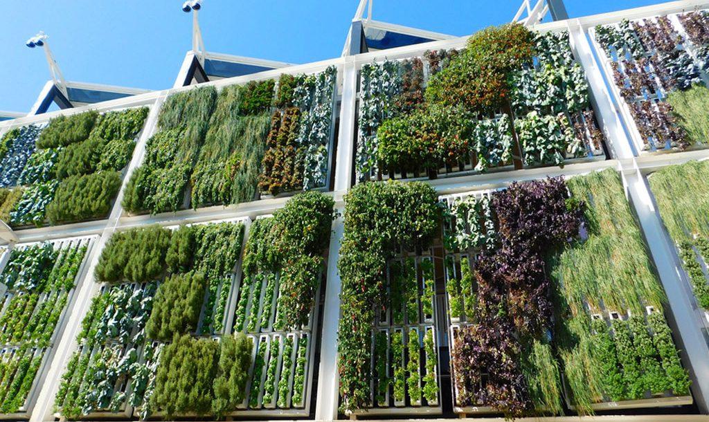 edificios con jardines verticales una nueva tendencia