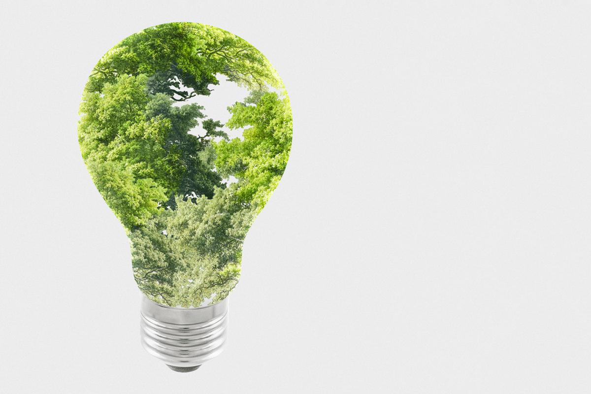 normativa transicion ecologica europa